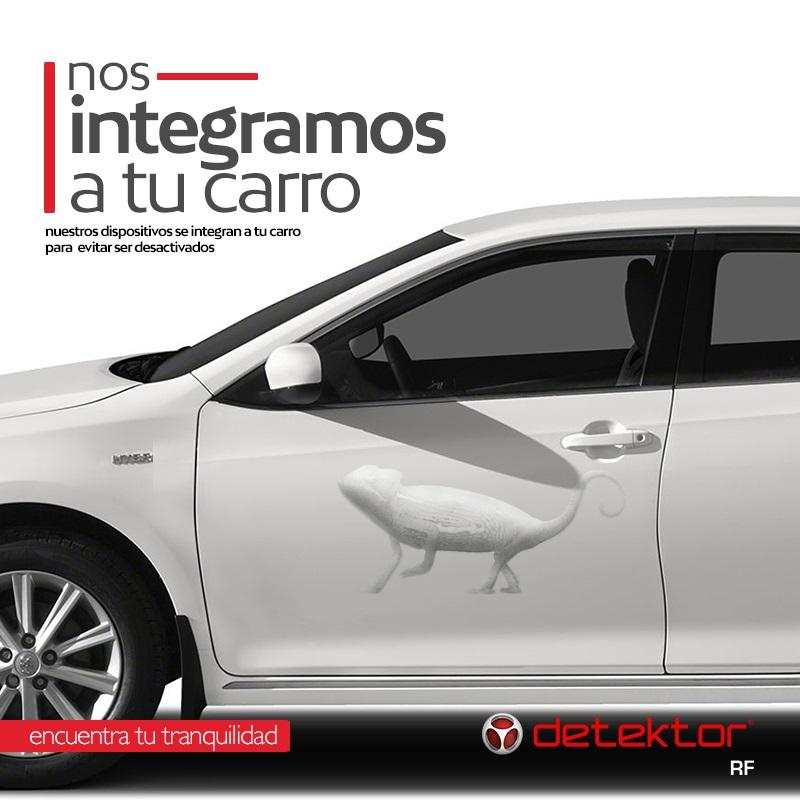 interno_campaign_camaleon1